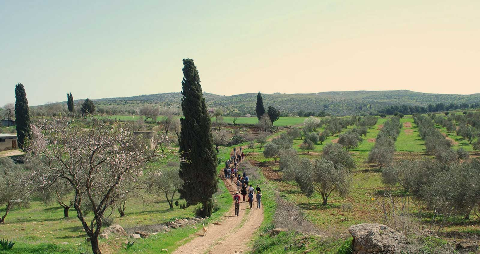 walking palestine ibrahim